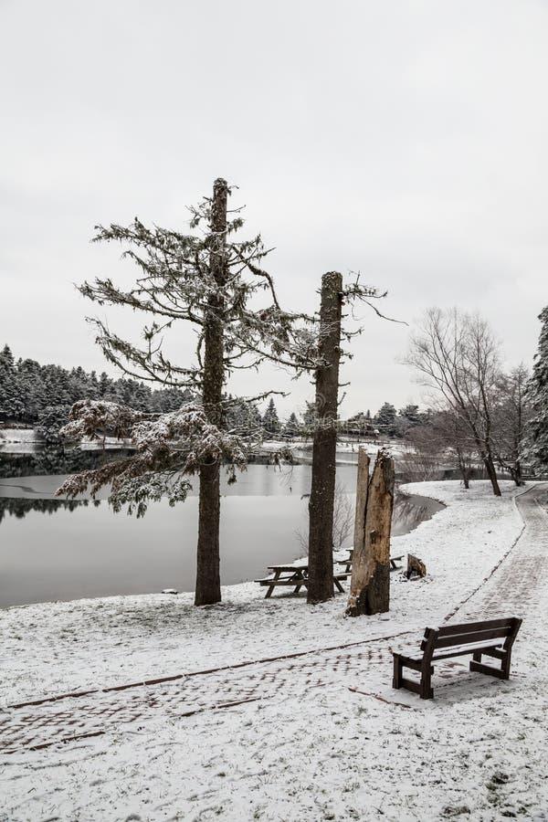 Ławka pod śniegiem fotografia royalty free