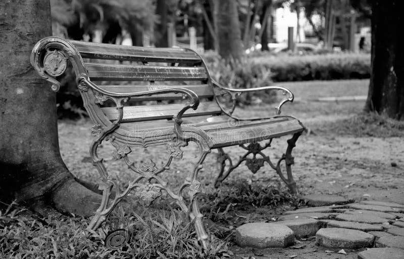 Ławka pod drzewem fotografia stock
