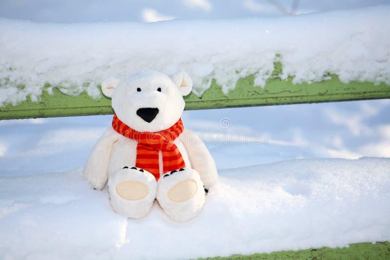 ławka teddy bear zdjęcia royalty free