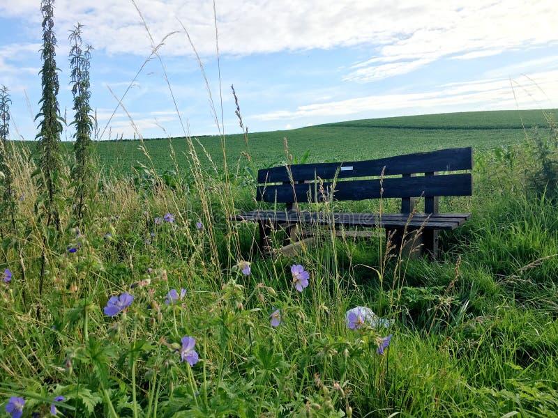Ławka w krajobrazie Niemiecka wieś w Baden-Wurrtemberg obrazy stock