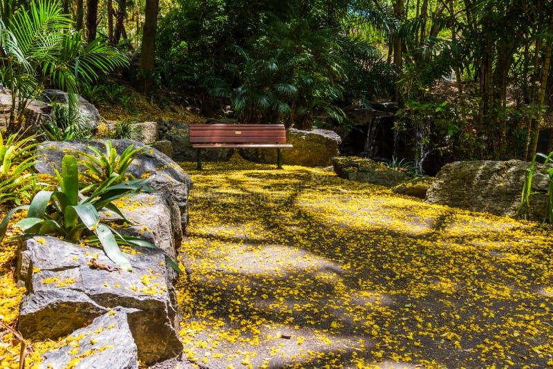 Ławka w ogrodzie zdjęcia royalty free