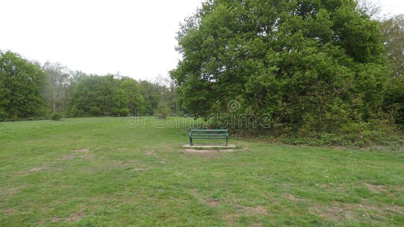 Ławka w Parkowym wspominaniu fotografia stock