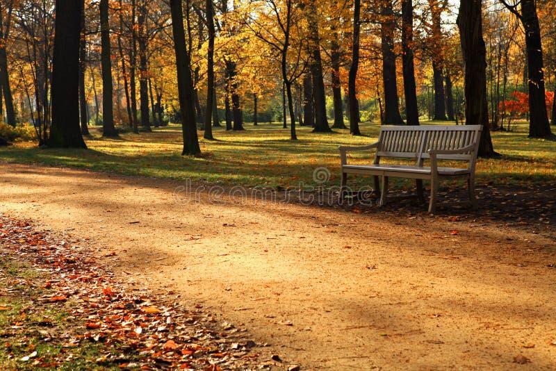 Ławka w parku. obrazy stock