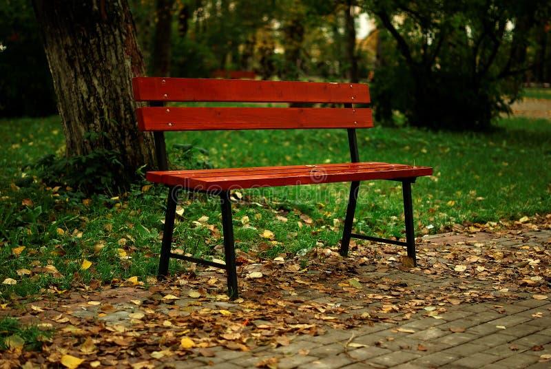Ławka w parku zdjęcia royalty free