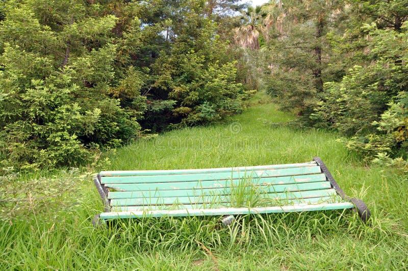 Ławka w zaniechanym parku Trawy dorośnięcie przez ławki zdjęcia royalty free
