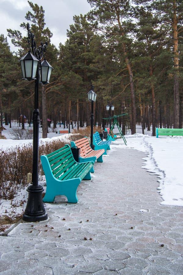 Ławka w zima lasu parku zdjęcie royalty free
