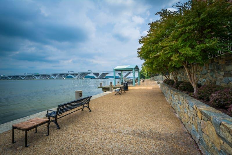Ławka wzdłuż Potomac Rzecznego nabrzeża w Aleksandria, Virgini zdjęcie royalty free