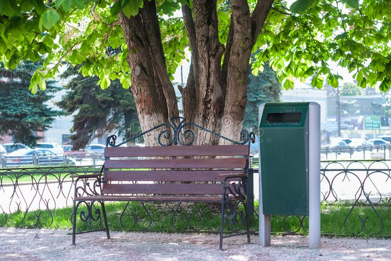 ławka z miasto kubłem na śmieci w miastowym parku pod kwiatonośnym kasztanem na słonecznym dniu zdjęcie stock
