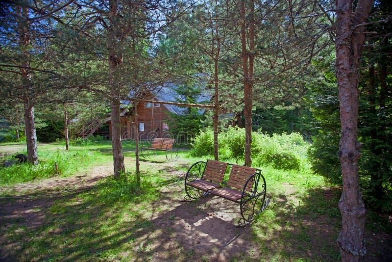 Ławki i wiejski drewniany dom w sosnowym lesie zdjęcia stock