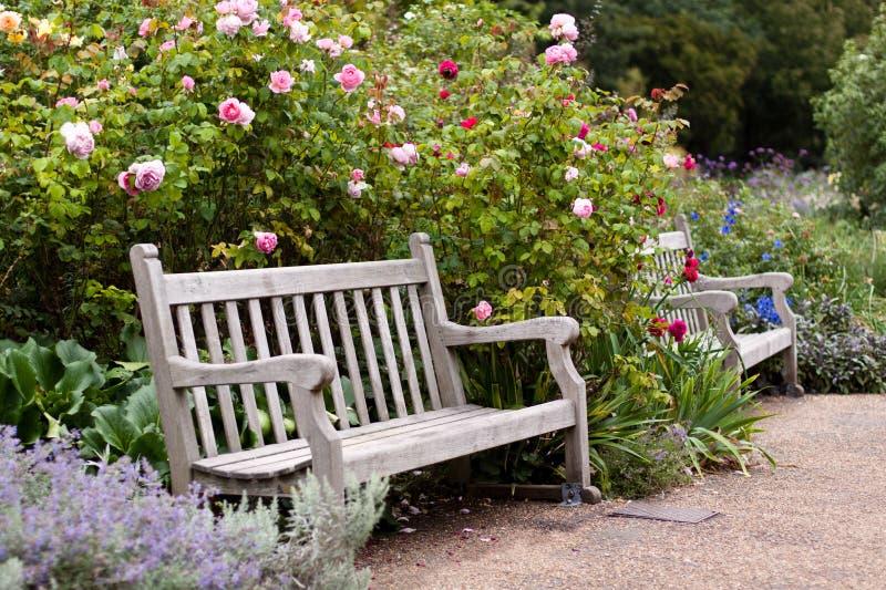 ławki ogródu parka róża drewniana zdjęcie royalty free