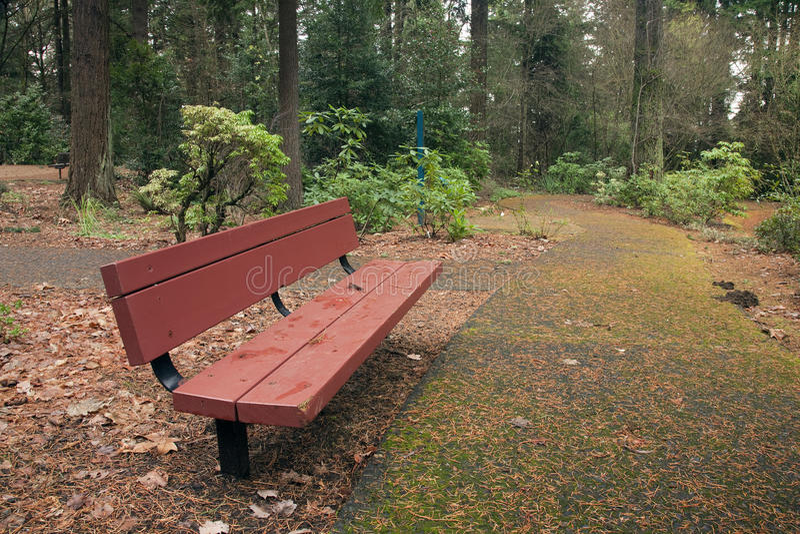 ławki parkowy Portland ślad zdjęcia royalty free