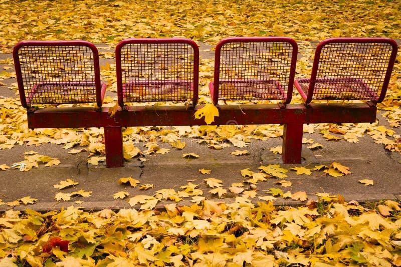 Ławki w Jesień fotografia stock