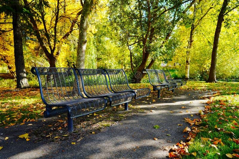 Ławki w jesień parku obraz royalty free