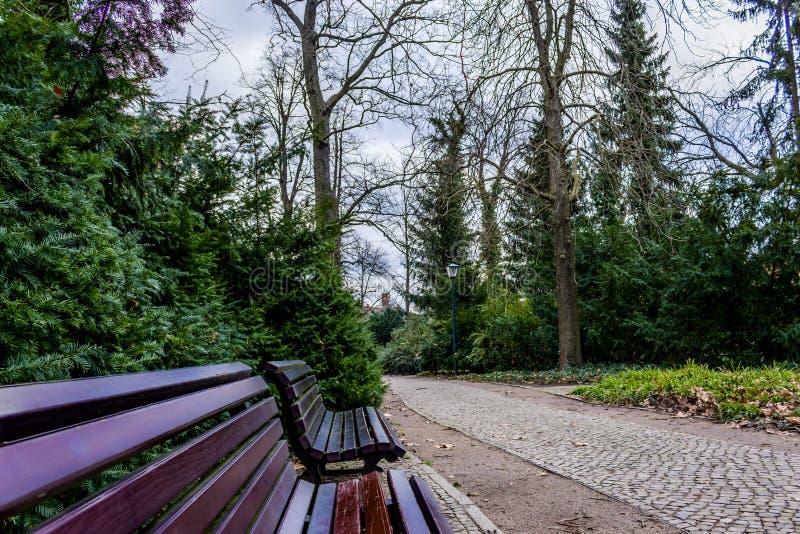 Ławki w ogródzie z brukowiec ścieżką fotografia royalty free