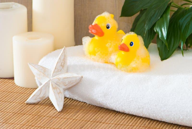 łazienek kaczki obrazy royalty free