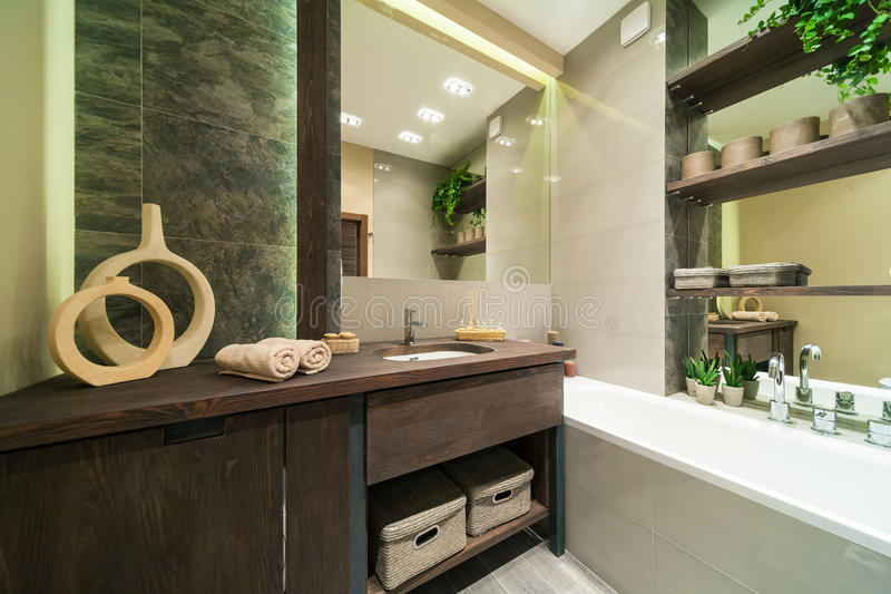 Łazienka w eco stylu obrazy royalty free