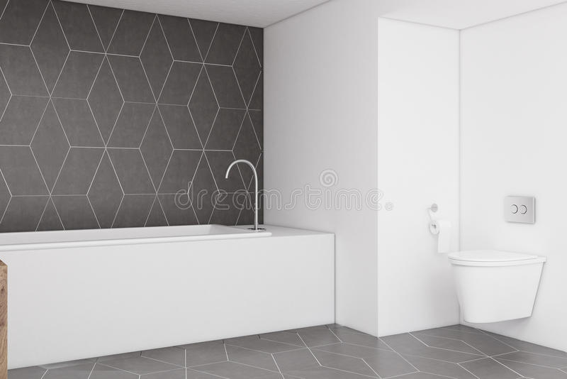 Łazienka z zmrokiem - szarość izolują, popierają kogoś, ilustracja wektor