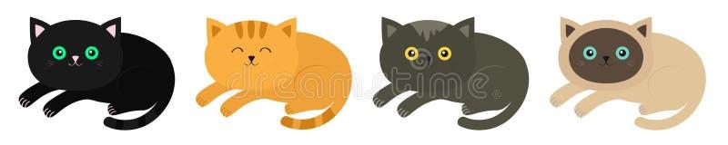 ?garska kot ikony setu linia Syjamscy szaro?? koloru koty w p?askim projekcie, czerwony, czarny, pomara?czowy, projektuj? ?liczny ilustracja wektor