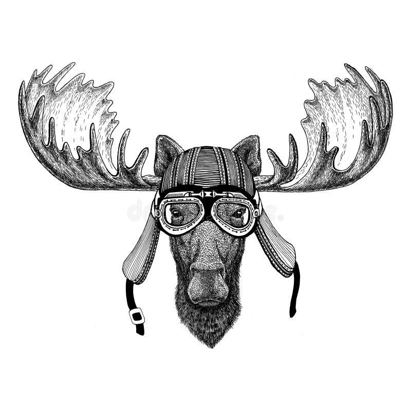 Łoś amerykański, łosia ręka rysujący zwierzęcy jest ubranym motocyklu hełm dla koszulki wizerunek, tatuaż, emblemat, odznaka, log ilustracji
