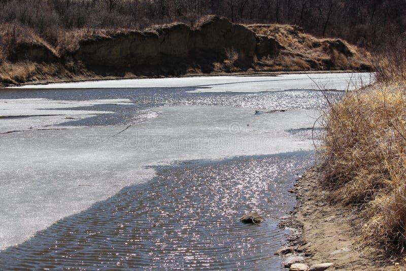 Łoś amerykański szczęki rzeka przy wiosną łama up obraz stock