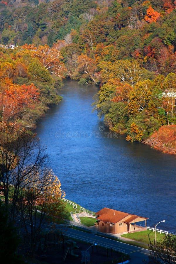 Łoś rzeka zdjęcia stock