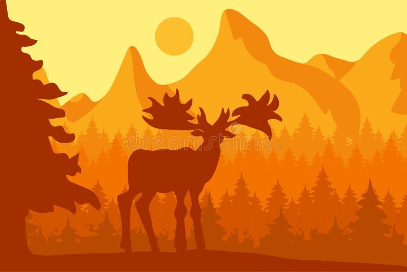 Łoś w ranku iglastym lesie ilustracja wektor