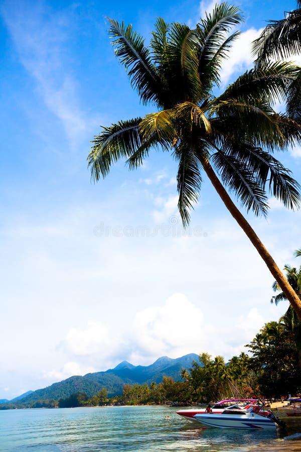 łodzi palm woda obrazy stock