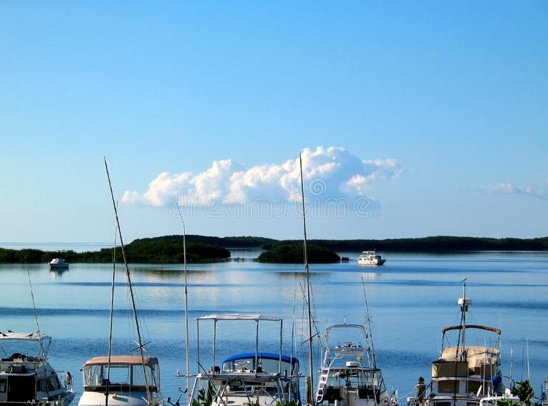 Łodzie Rybackie cumowali z Islamorada w Floryda kluczach z innymi łodziami behind na wodzie fotografia royalty free