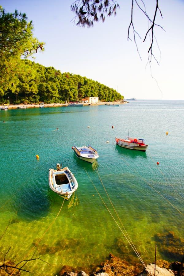 Łodzie rybackie przy Agnontas trzymać na dystans na słonecznym dniu, Grecja obrazy royalty free