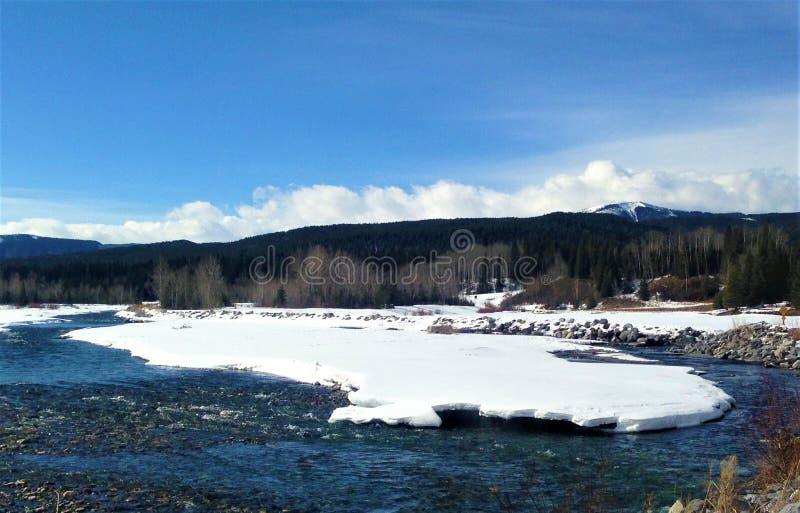 Łokieć rzeka, natura obrazy stock