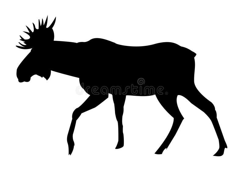 Łosia czerń na białej sylwetki ilustraci ilustracja wektor