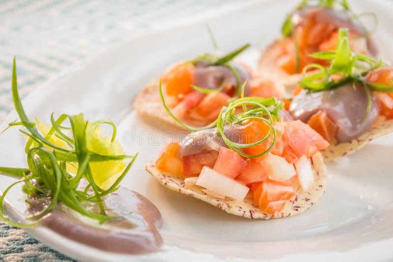 Łososiowy Ceviche zdjęcia stock