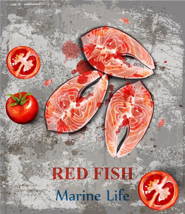 Łososiowy rybich stków akwareli wektor Rybi stki na roczników tło Menu szablony royalty ilustracja