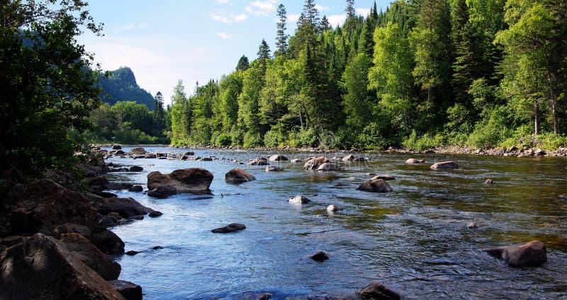 Łososiowy rzeka krajobraz zdjęcia royalty free