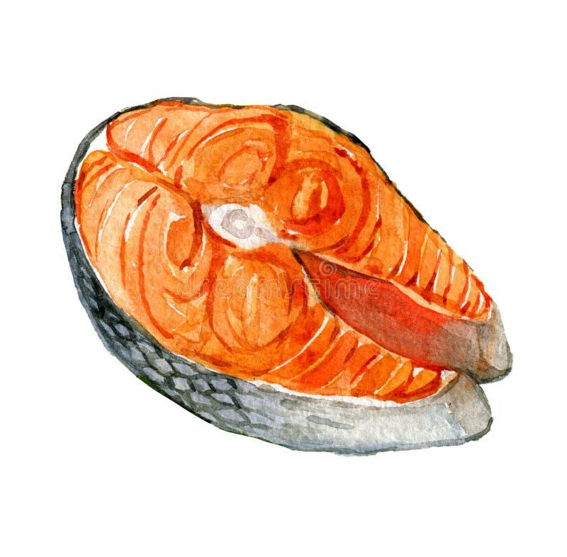 Łososiowy stek odizolowywający na bielu, akwareli ilustracja royalty ilustracja