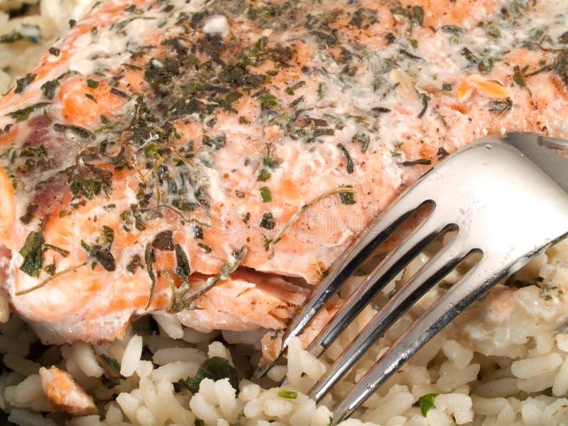 Łososiowy stek Z Rice i śmietanką obrazy royalty free