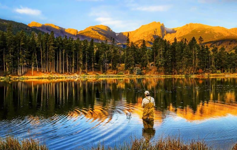 Łowiący przy wschodem słońca, w Kolorado górach obrazy stock