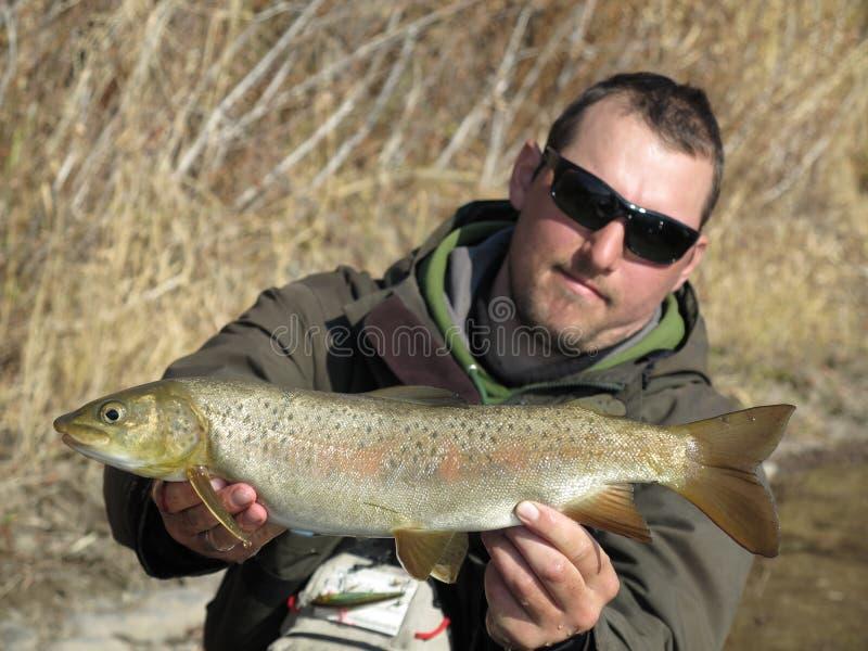 Łowić - lenok pstrągowy połów w Mongolia fotografia stock