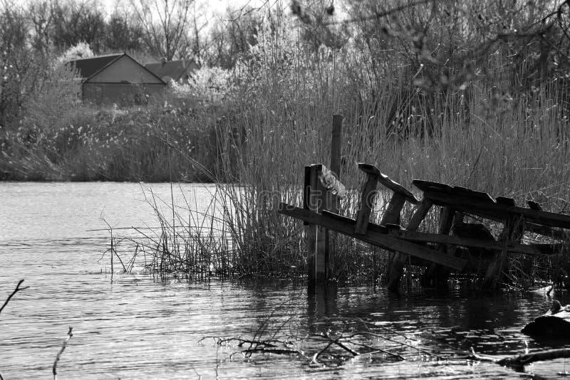 Łowić most obrazy stock