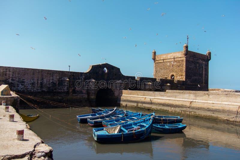 Łowić piękne błękitne łodzie, przekładnię i chwyta na tle Castelo real Mogador w Essaouira starym schronieniu, obraz royalty free