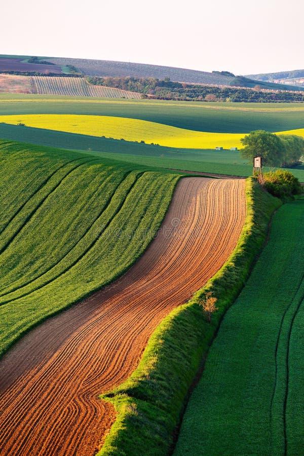 Łowiecka stróżówka na wiosny zieleni polach czech Moravia obrazy stock