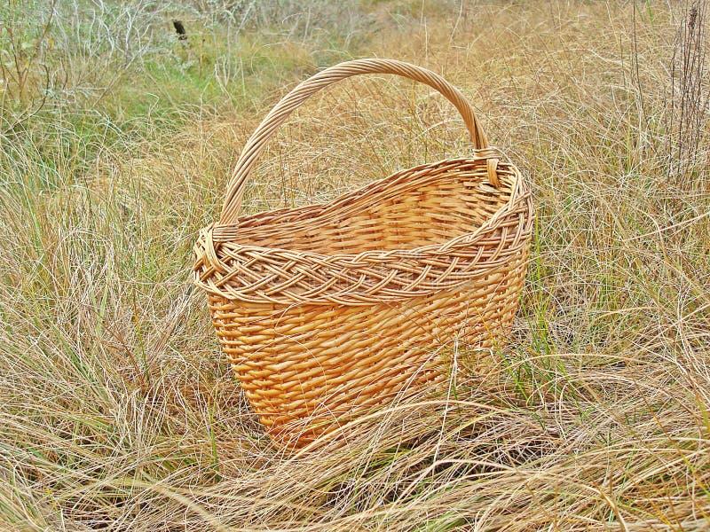 Łozinowi słomiani koszy stojaki na suchej trawie zdjęcie stock