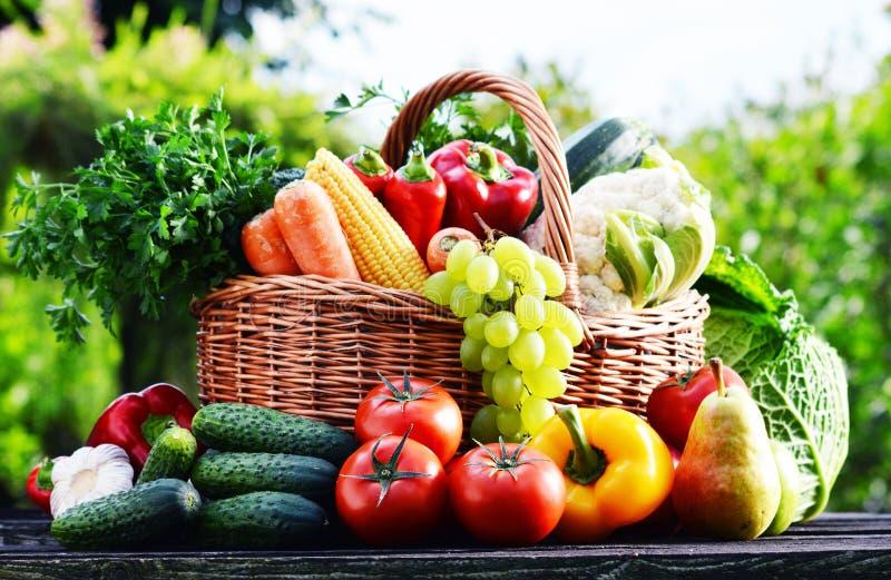Łozinowy kosz z asortowanymi surowymi organicznie warzywami w ogródzie obrazy stock