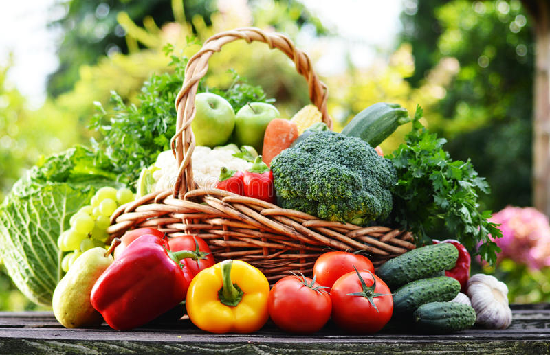 Łozinowy kosz z asortowanymi surowymi organicznie warzywami w ogródzie obraz royalty free