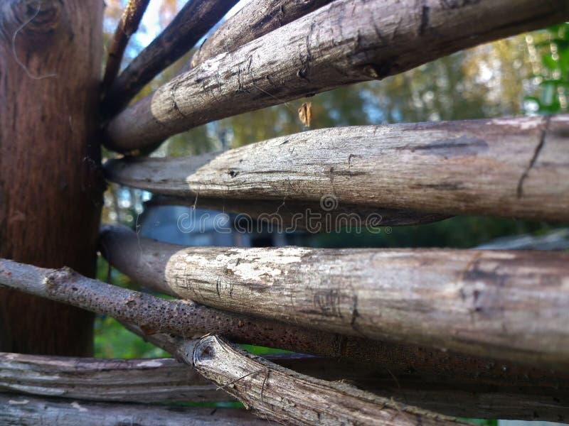 Łozinowy ogrodzenie w górę zdjęcie stock