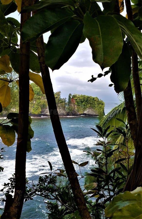 Łuk Onomea na Hawajach zdjęcia royalty free