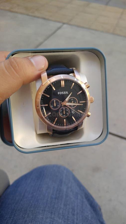 Łupliwy zegarek obraz stock