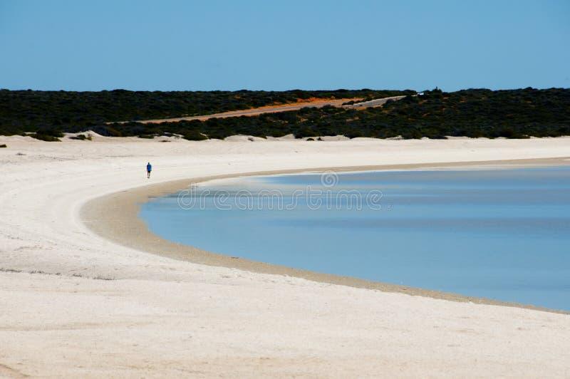 Łuska plażę fotografia stock