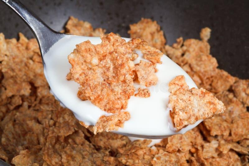 Łyżka z jogurtem i cornflakes zdjęcia stock