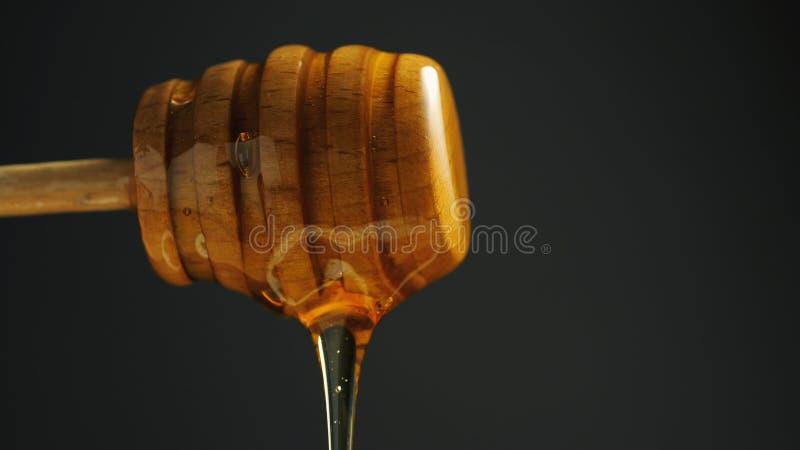 Łyżka zdrowy organicznie miód na czarnym tle Miodowy obcieknięcie od drewnianej chochli w górę fotografia royalty free